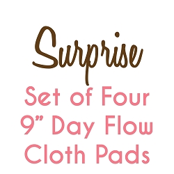Set of Four 9 Inch Surprise Fabric Day Pads with Fleece backs